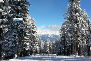 Northstar Private Ski Lesson Discount Coupon