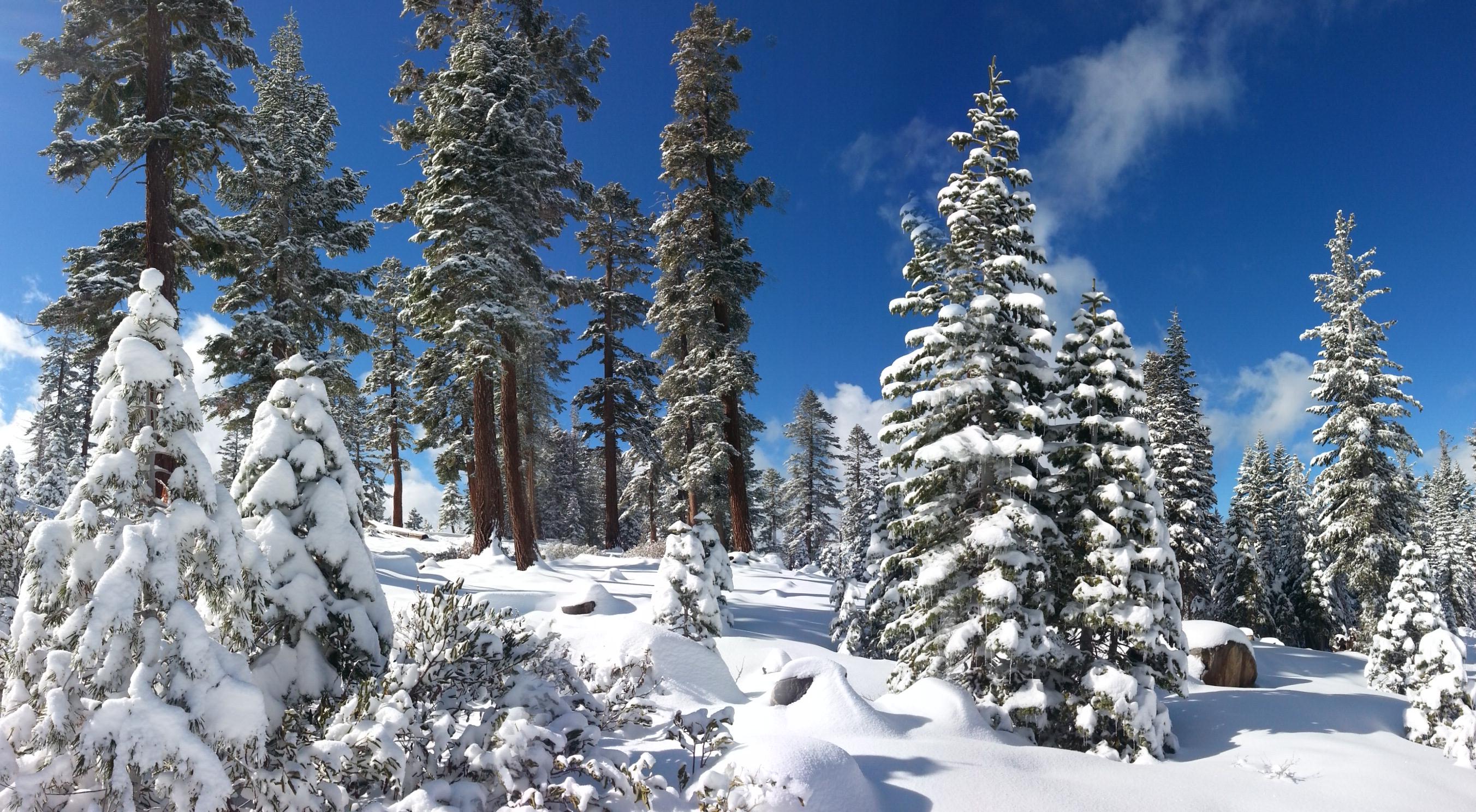Northstar Private Ski Lesson Discount Coupon Private Ski Lessons