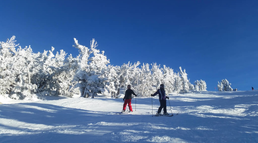 Lake Tahoe Discount Private Ski Lessons