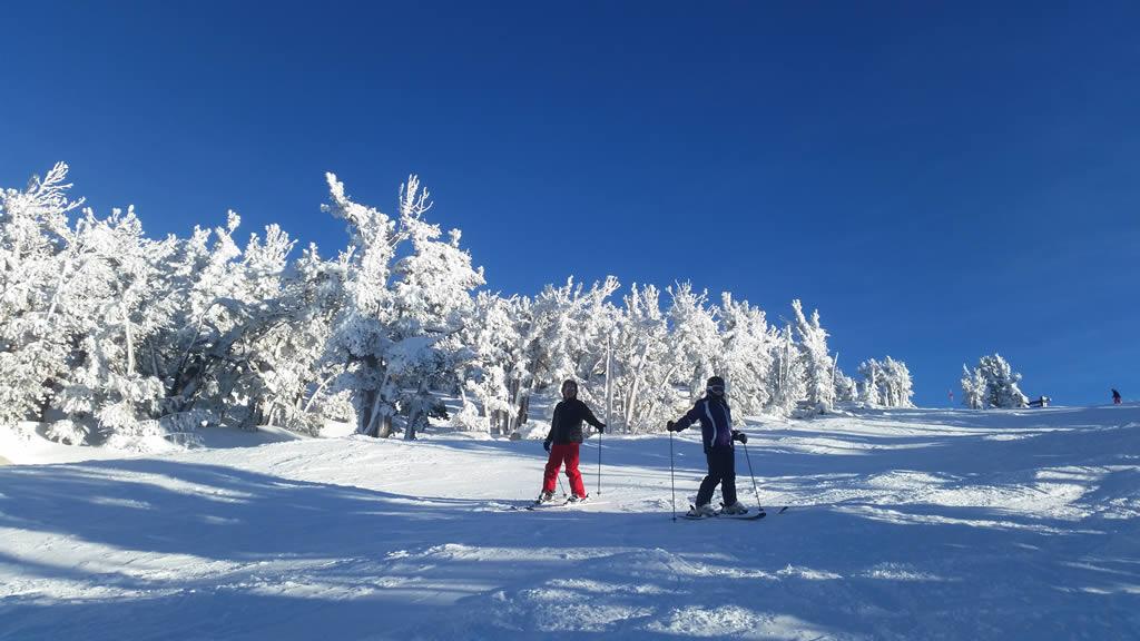 Tahoe Private Ski Lesson Discount