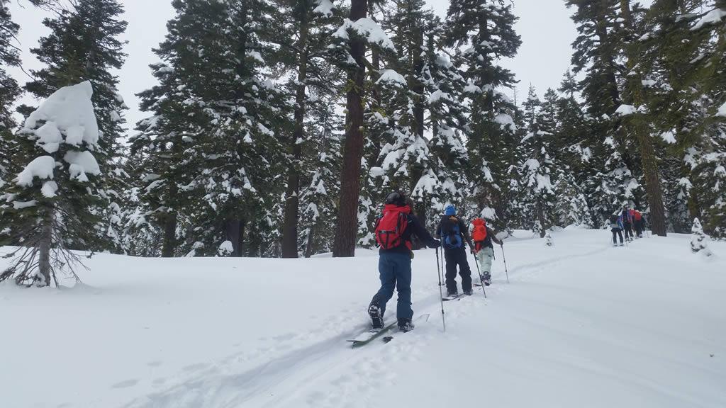 Lake Tahoe Backcountry Ski & Splittail Guide